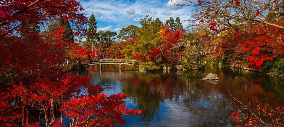 Kyoto gezilecek yerler