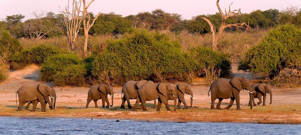 Botswana gezilecek yerler
