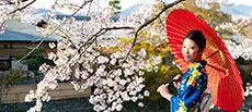 Japonya gezilecek yerler